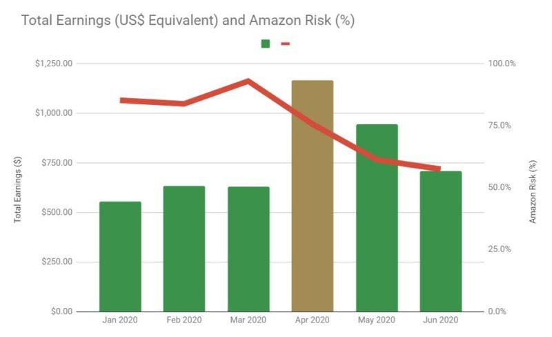 2020 H1 Earnings vs Amazon Risk